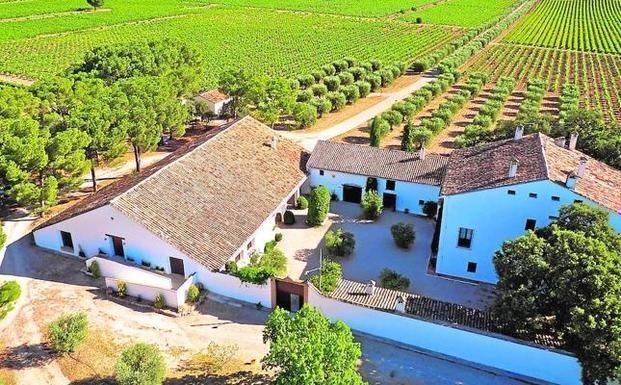 Wijnhuis Bodega Vicente Gandia